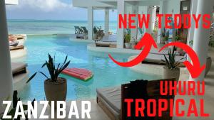 PILIPILI Uhuru Tropical Nautica i NEW TEDDYS ZANZIBAR